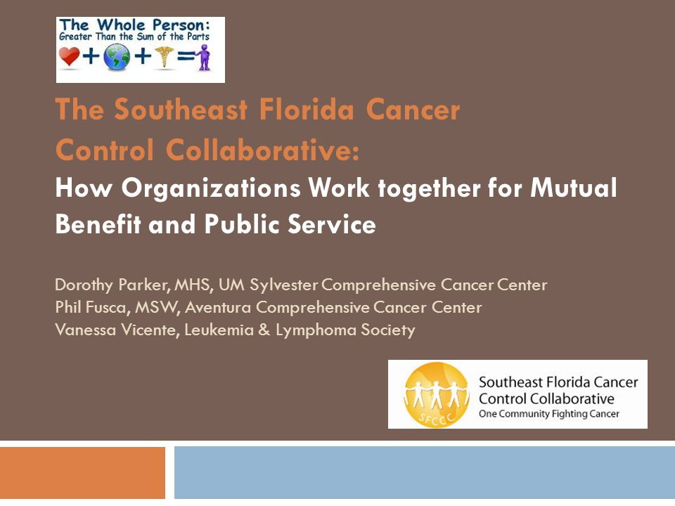 Presentation Outline  Social Work Principles & Historical Perspectives Phil Fusca  Background on the SFCCC & the Florida Cancer Plan Dorothy Parker  Function & Structure of SFCCC Vanessa Vicente Dorothy Parker
