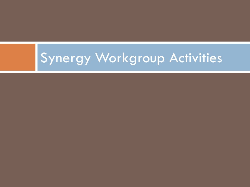 Synergy Workgroup Activities