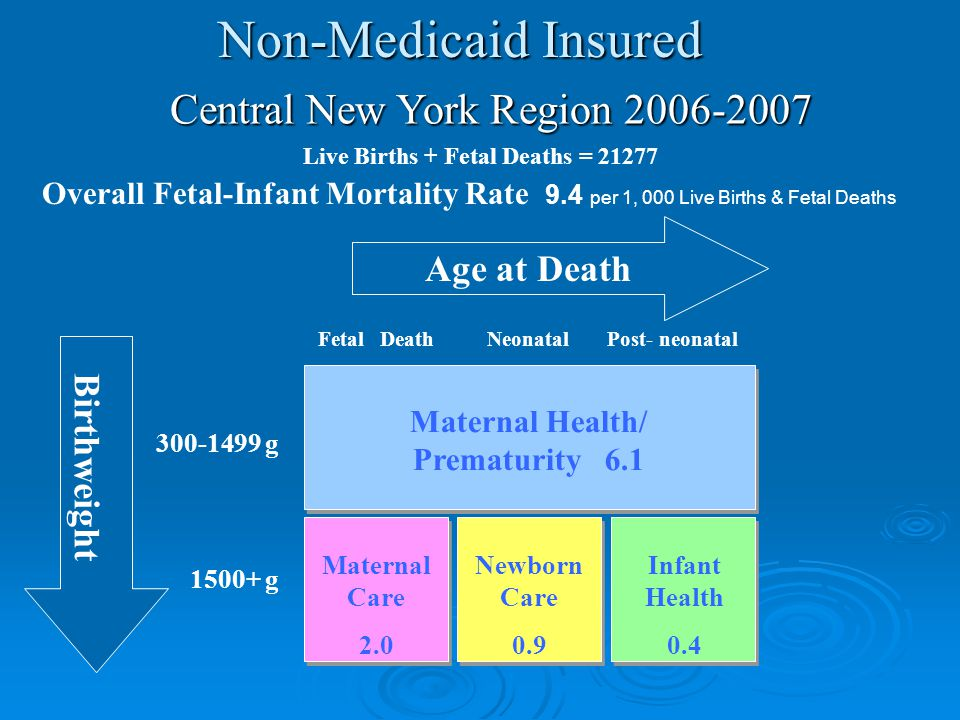 300-1499 g 1500+ g Maternal Health/ Prematurity 6.1 Maternal Care 2.0 Newborn Care 0.9 Infant Health 0.4 Age at Death Birthweight Central New York Region 2006-2007 Live Births + Fetal Deaths = 21277 Overall Fetal-Infant Mortality Rate 9.4 per 1, 000 Live Births & Fetal Deaths Fetal DeathNeonatalPost- neonatal Non-Medicaid Insured