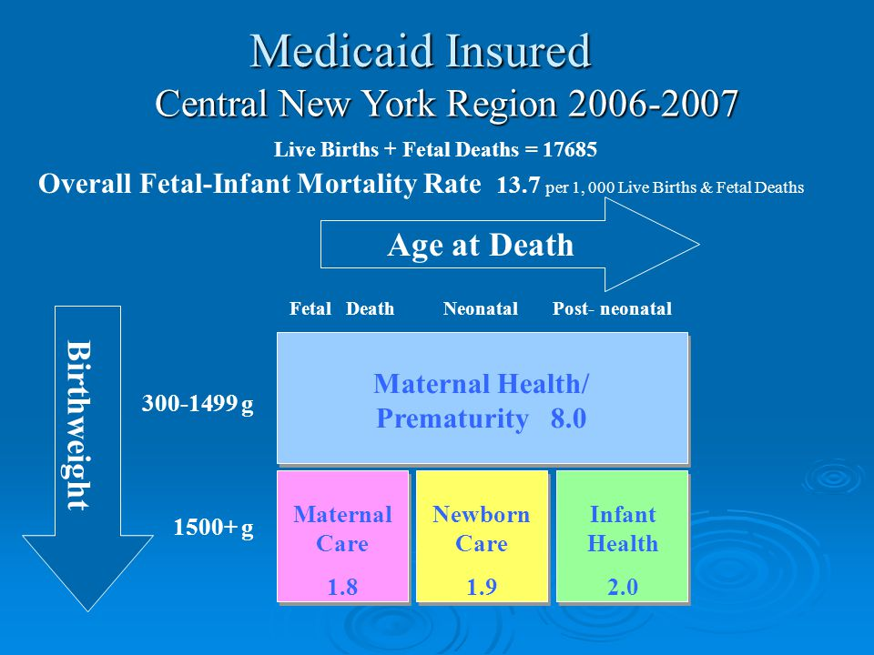 300-1499 g 1500+ g Maternal Health/ Prematurity 8.0 Maternal Care 1.8 Newborn Care 1.9 Infant Health 2.0 Age at Death Birthweight Central New York Region 2006-2007 Live Births + Fetal Deaths = 17685 Overall Fetal-Infant Mortality Rate 13.7 per 1, 000 Live Births & Fetal Deaths Fetal DeathNeonatalPost- neonatal Medicaid Insured