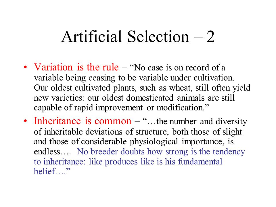 Evolution and Adaptation by Natural Selection: The Darwin-Wallace Argument Postulate 1: There is variation among individuals Postulate 2: Some of the variation is heritable Postulate 3: In every generation some individuals are more successful at surviving and reproducing than others —the struggle for existence (see Chapter 3 of the Origin ) Postulate 4: The survival and reproduction of individuals are not random.
