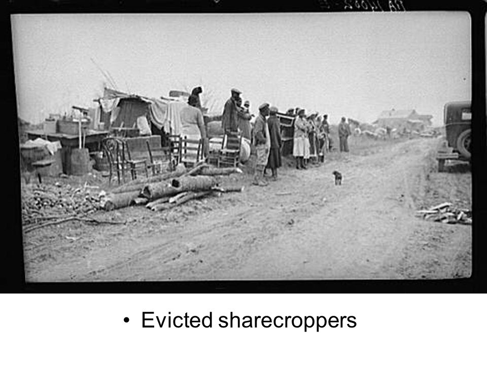 Evicted sharecroppers
