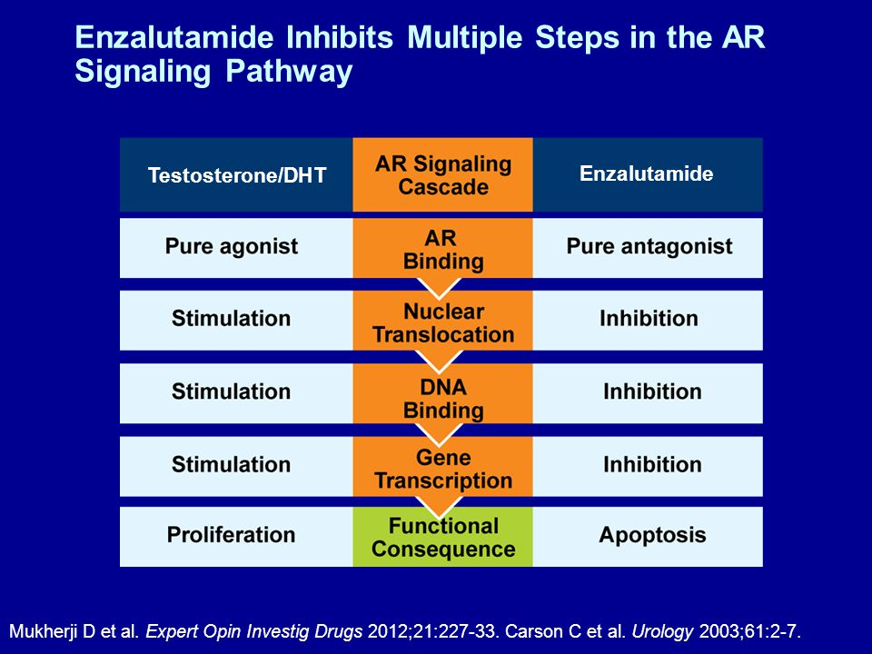 Enzalutamide Inhibits Multiple Steps in the AR Signaling Pathway Mukherji D et al.