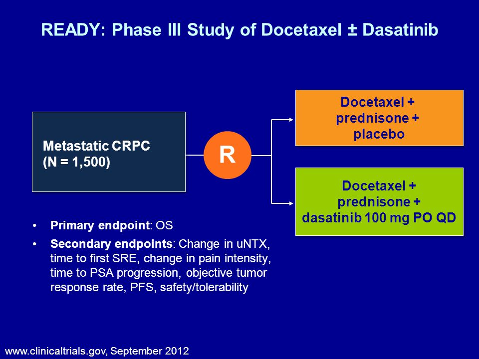 Primary endpoint: OS Secondary endpoints: Change in uNTX, time to first SRE, change in pain intensity, time to PSA progression, objective tumor response rate, PFS, safety/tolerability www.clinicaltrials.gov, September 2012 READY: Phase III Study of Docetaxel ± Dasatinib Docetaxel + prednisone + placebo Docetaxel + prednisone + placebo Docetaxel + prednisone + dasatinib 100 mg PO QD R Metastatic CRPC (N = 1,500)