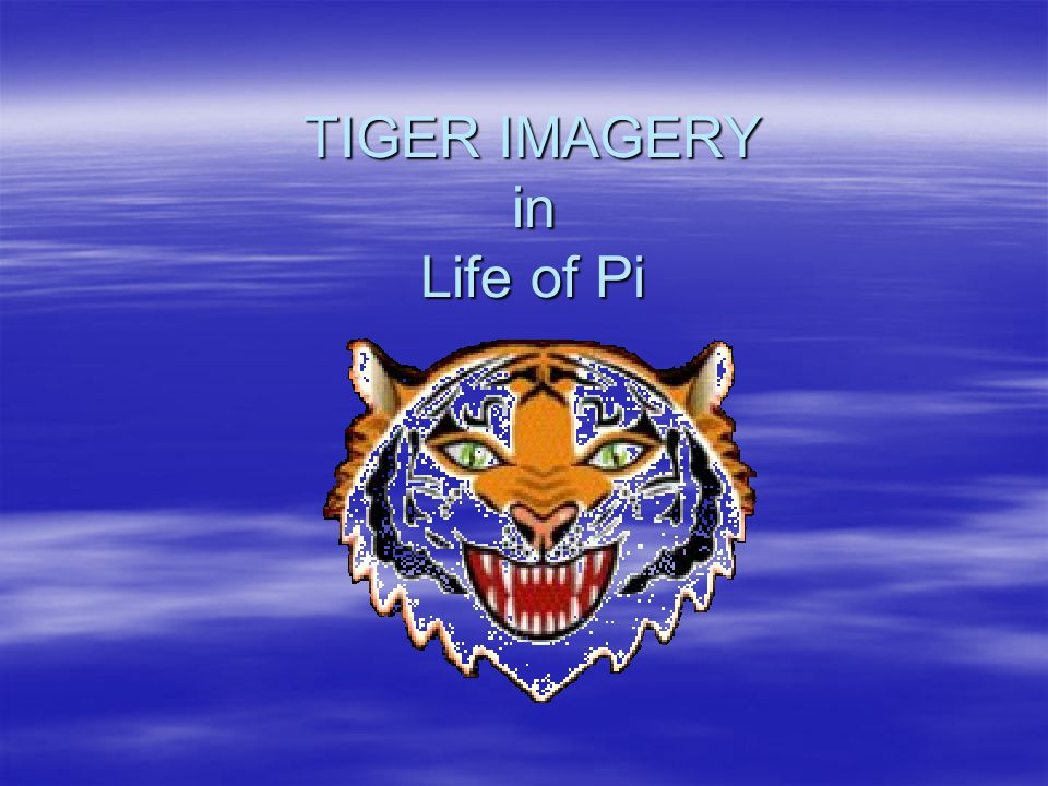 TIGER IMAGERY in Life of Pi