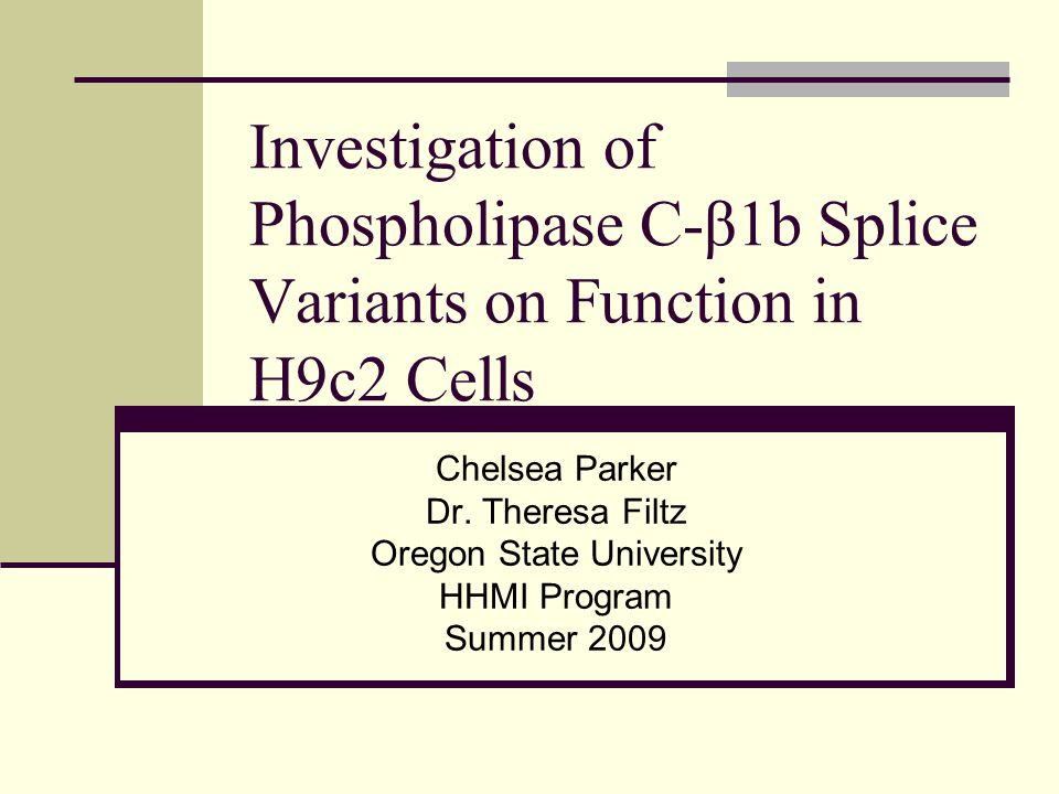 Investigation of Phospholipase C-β1b Splice Variants on Function in H9c2 Cells Chelsea Parker Dr.