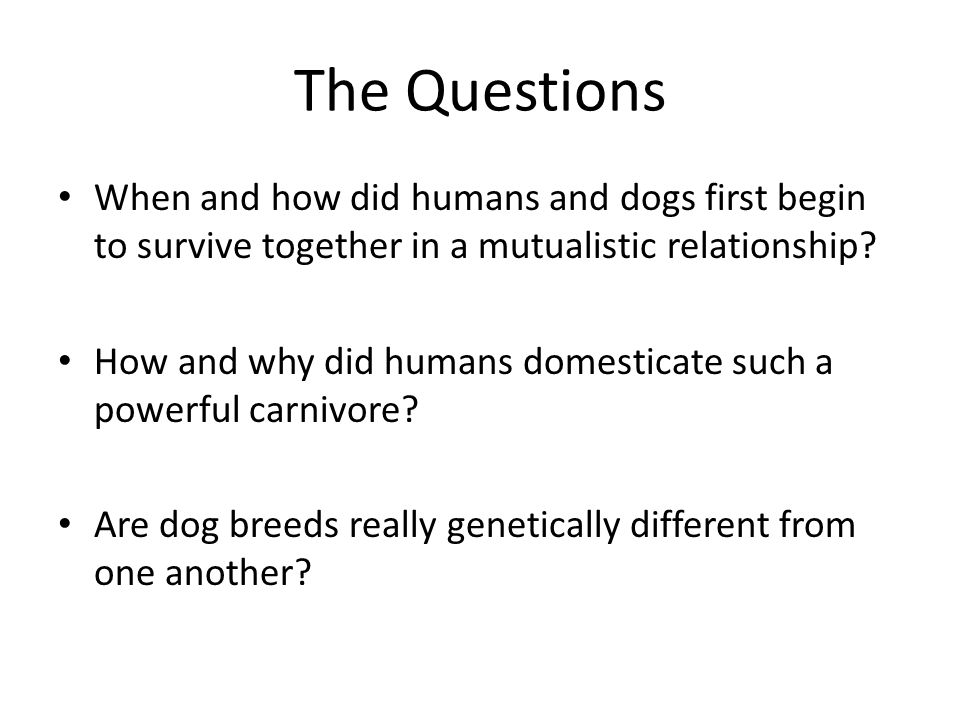 The Questions When and how did humans and dogs first begin to survive together in a mutualistic relationship? How and why did humans domesticate such