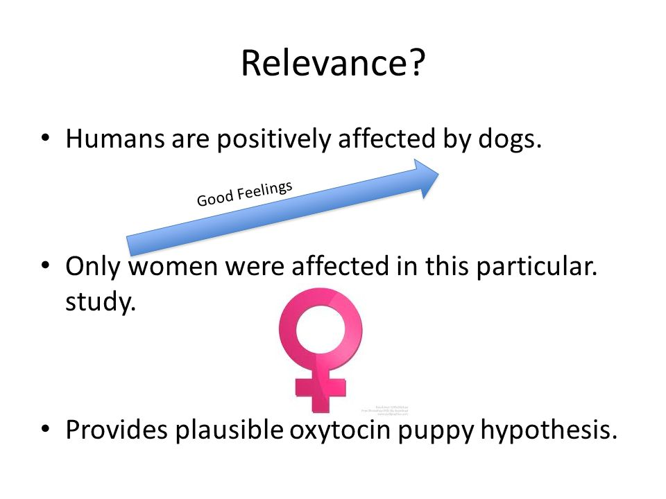 Relevance. Humans are positively affected by dogs.