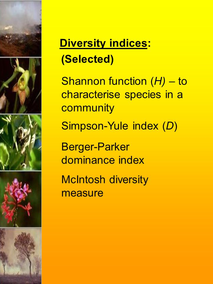 Diversity indices: (Selected) Shannon function (H) – to characterise species in a community Simpson-Yule index (D) Berger-Parker dominance index McInt