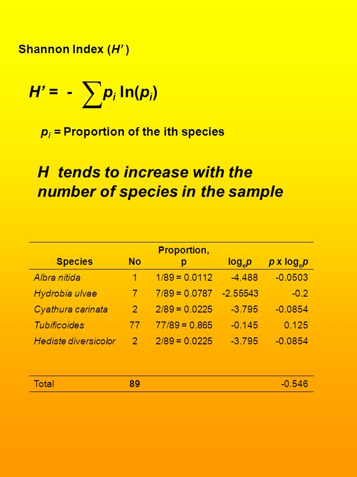 Shannon Index (H' ) H' = - p i ln(p i ) ∑ p i = Proportion of the ith species H tends to increase with the number of species in the sample SpeciesNo P