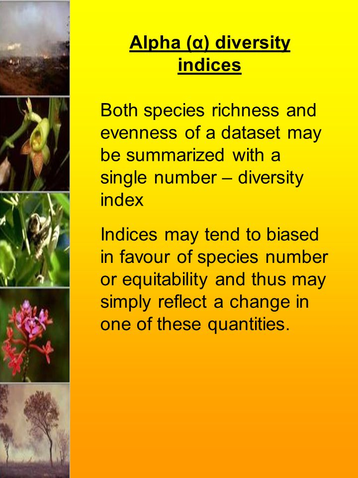 Alpha (α) diversity indices Both species richness and evenness of a dataset may be summarized with a single number – diversity index Indices may tend