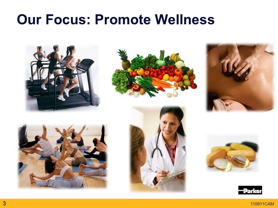 110811CAM Our Focus: Promote Wellness 3