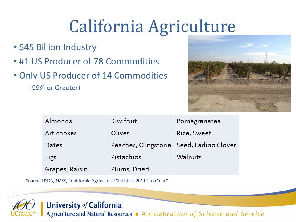 California Agriculture $45 Billion Industry #1 US Producer of 78 Commodities Only US Producer of 14 Commodities (99% or Greater) AlmondsKiwifruitPomegranates ArtichokesOlivesRice, Sweet DatesPeaches, ClingstoneSeed, Ladino Clover FigsPistachiosWalnuts Grapes, RaisinPlums, Dried Source: USDA, NASS, California Agricultural Statistics, 2011 Crop Year .