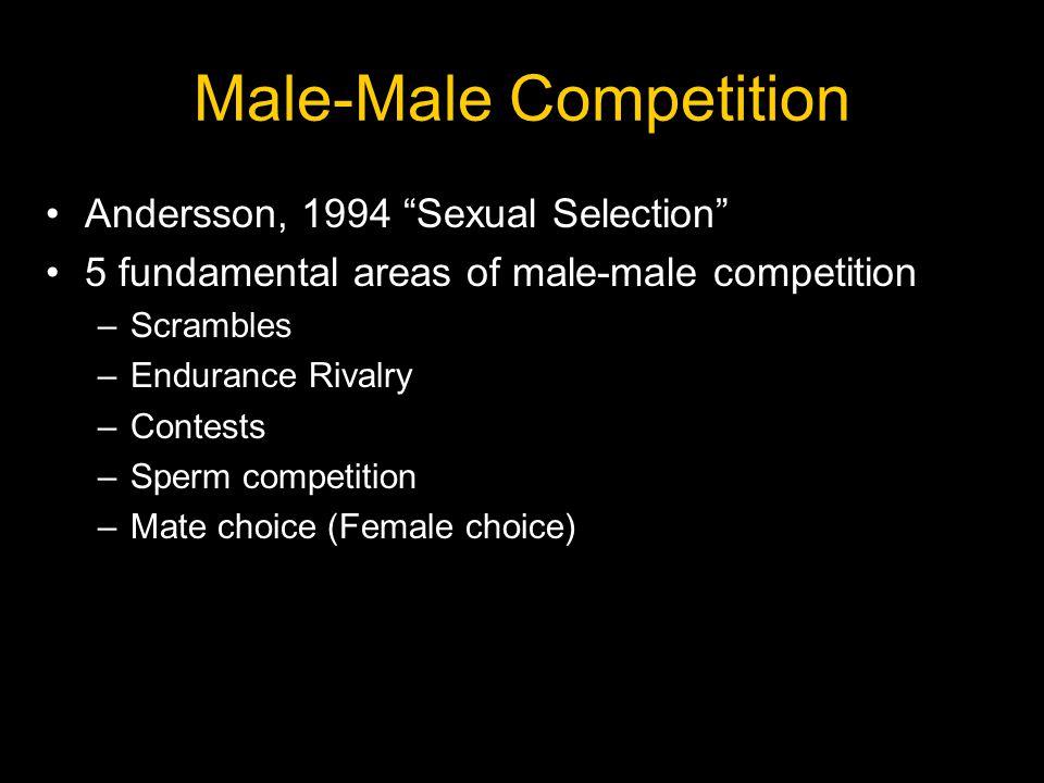 Darwin & Sperm Competition