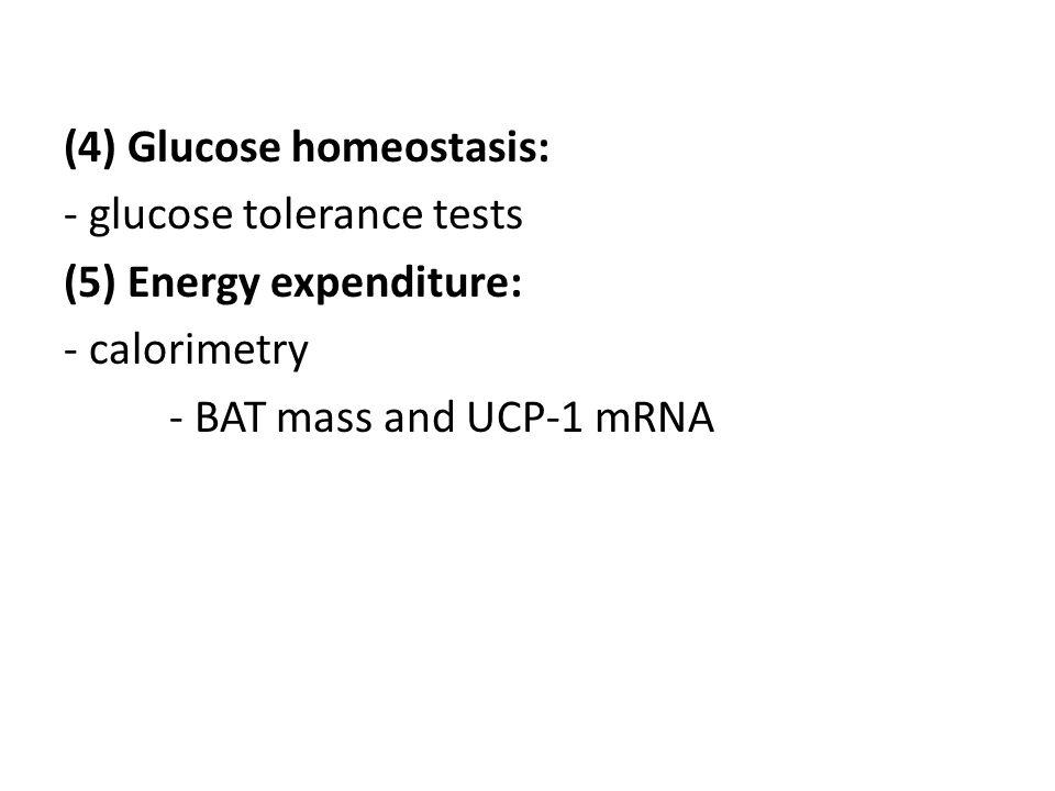 (4) Glucose homeostasis: - glucose tolerance tests (5) Energy expenditure: - calorimetry - BAT mass and UCP-1 mRNA
