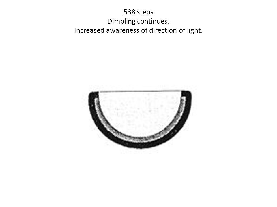 538 steps Dimpling continues. Increased awareness of direction of light.