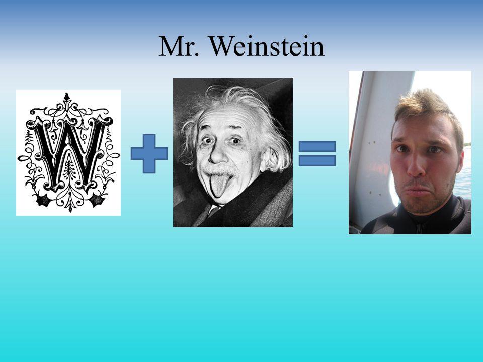 Mr. Weinstein