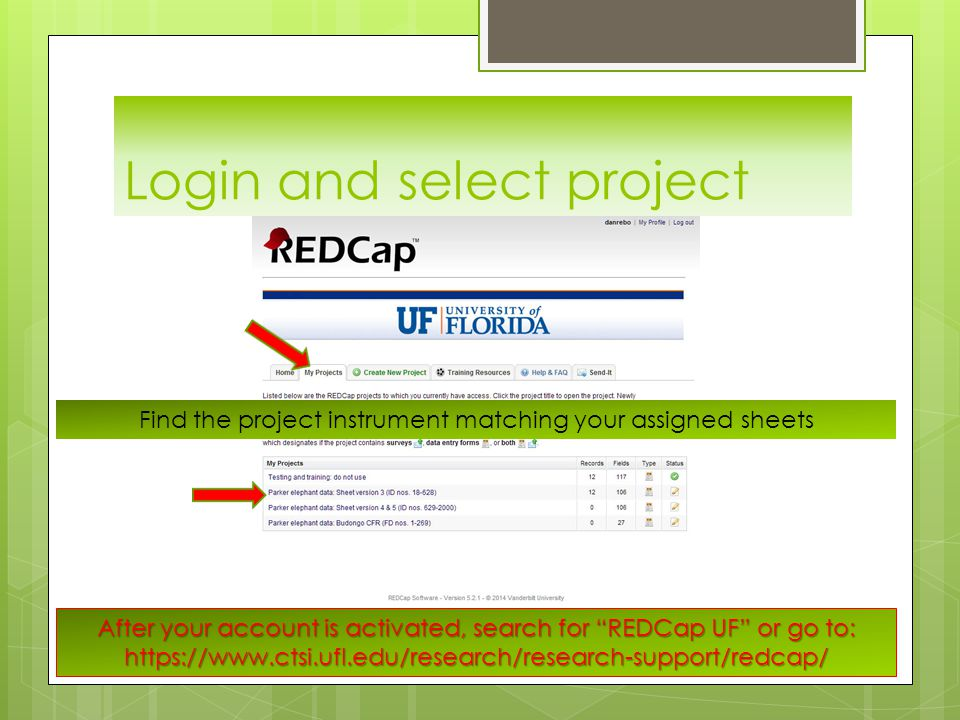 After your account is activated, search for REDCap UF or go to: https://www.ctsi.ufl.edu/research/research-support/redcap/ Find the project instrument matching your assigned sheets
