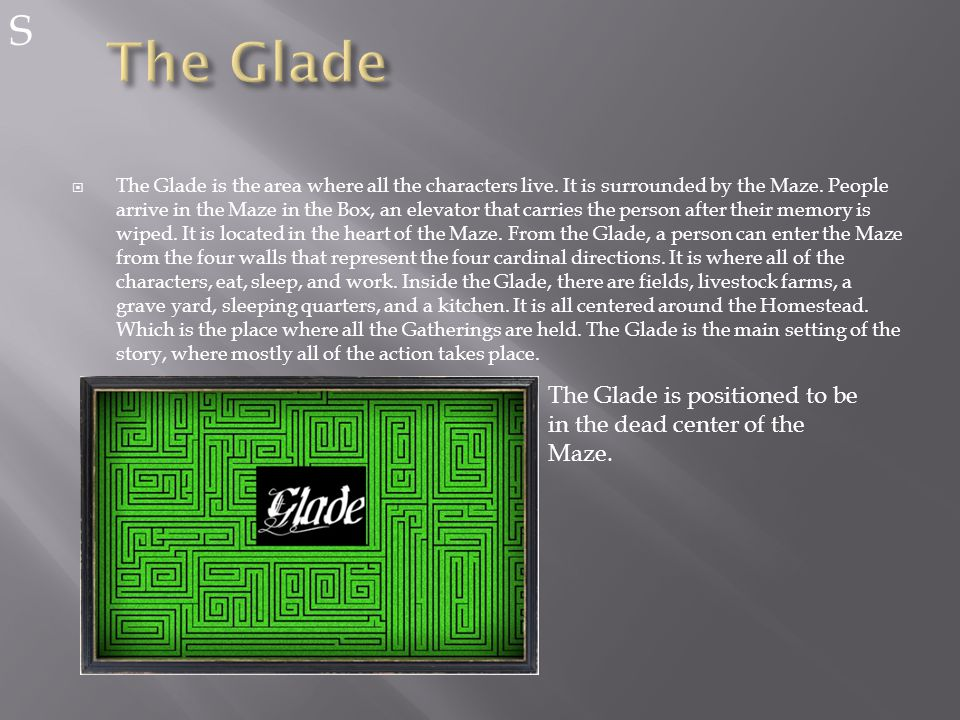  The Glade is the area where all the characters live.