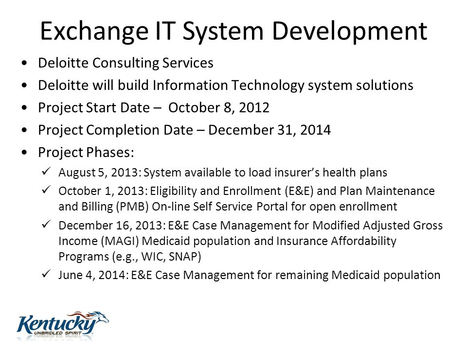 Exchange IT System Development Deloitte Consulting Services Deloitte will build Information Technology system solutions Project Start Date – October 8