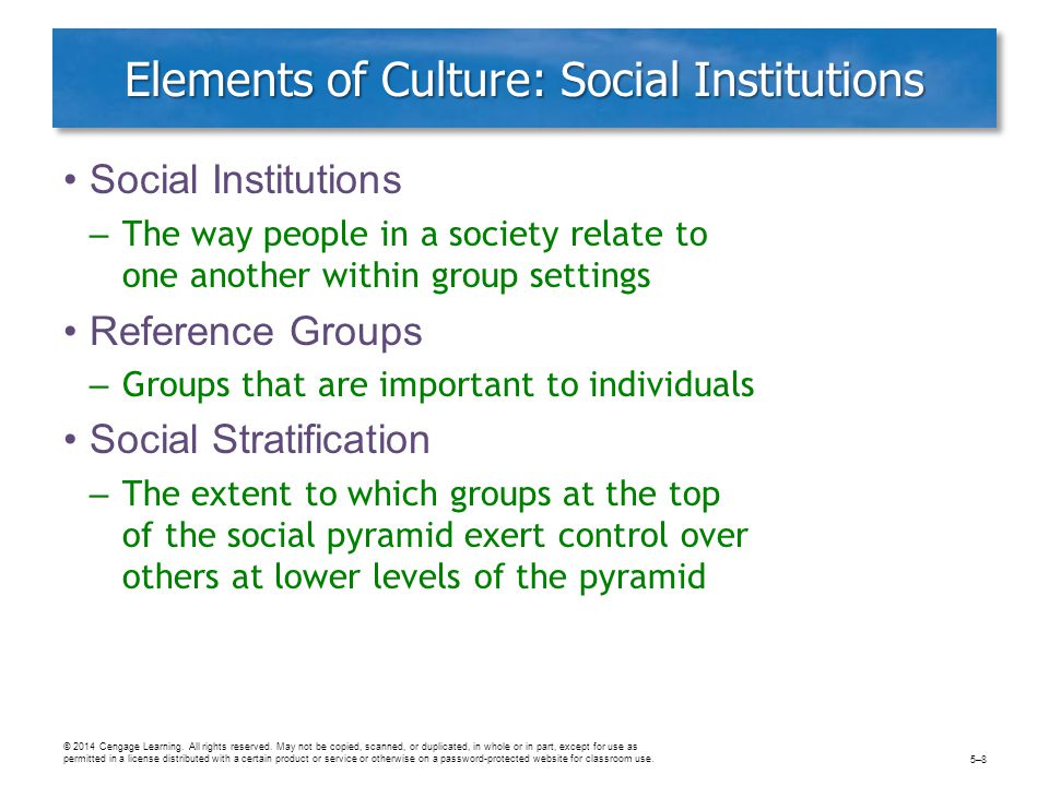Elements of Culture: Social Institutions Social Institutions – The way people in a society relate to one another within group settings Reference Groups – Groups that are important to individuals Social Stratification – The extent to which groups at the top of the social pyramid exert control over others at lower levels of the pyramid © 2014 Cengage Learning.