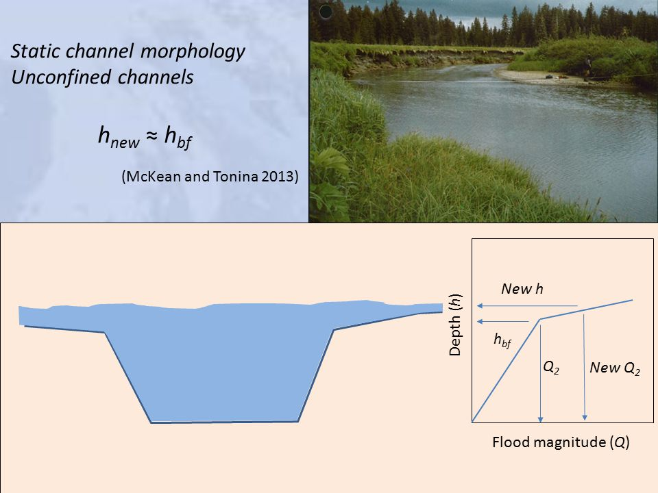 Depth (h) Flood magnitude (Q) h bf Q2Q2 New Q 2 New h Static channel morphology Unconfined channels h new ≈ h bf (McKean and Tonina 2013)