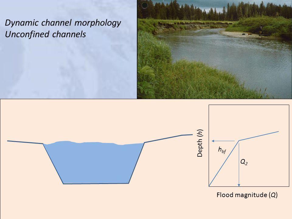 Dynamic channel morphology Unconfined channels h bf Q2Q2 Depth (h) Flood magnitude (Q)