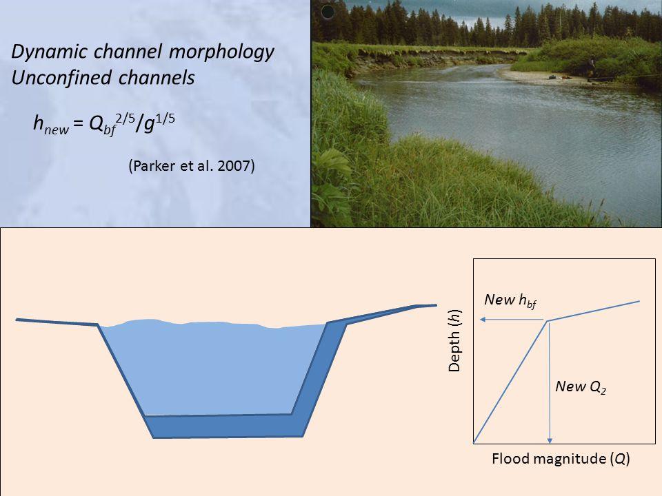 Dynamic channel morphology Unconfined channels New h bf New Q 2 Depth (h) Flood magnitude (Q) h new = Q bf 2/5 /g 1/5 (Parker et al.