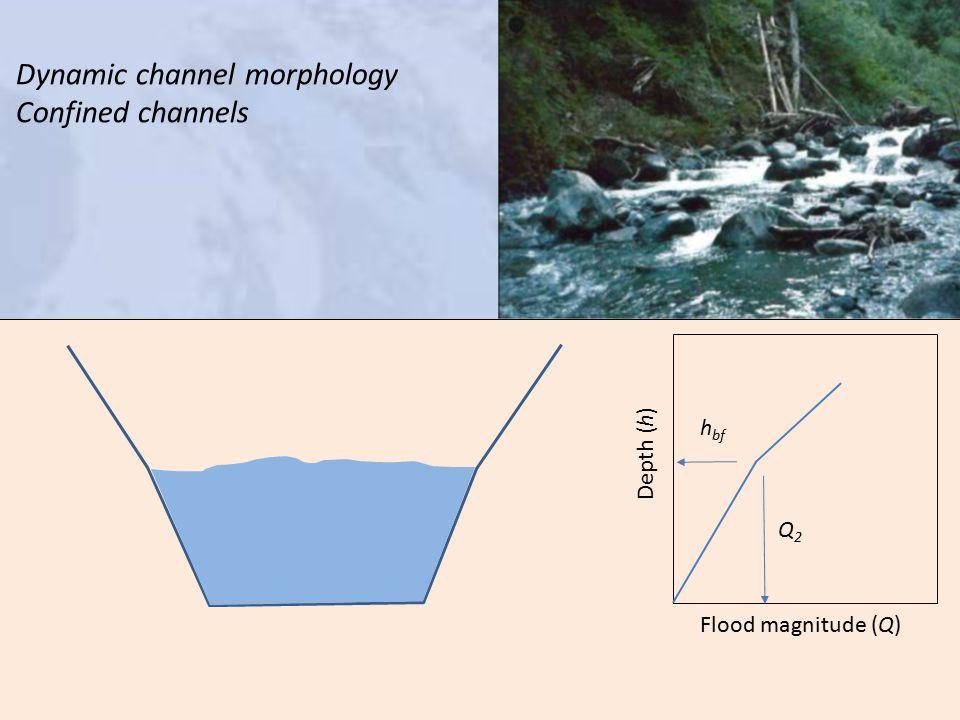 h bf Q2Q2 Depth (h) Flood magnitude (Q) Dynamic channel morphology Confined channels