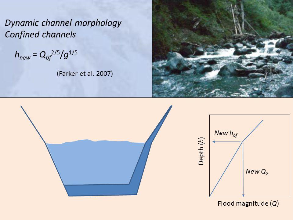 New h bf New Q 2 Depth (h) Flood magnitude (Q) Dynamic channel morphology Confined channels h new = Q bf 2/5 /g 1/5 (Parker et al.