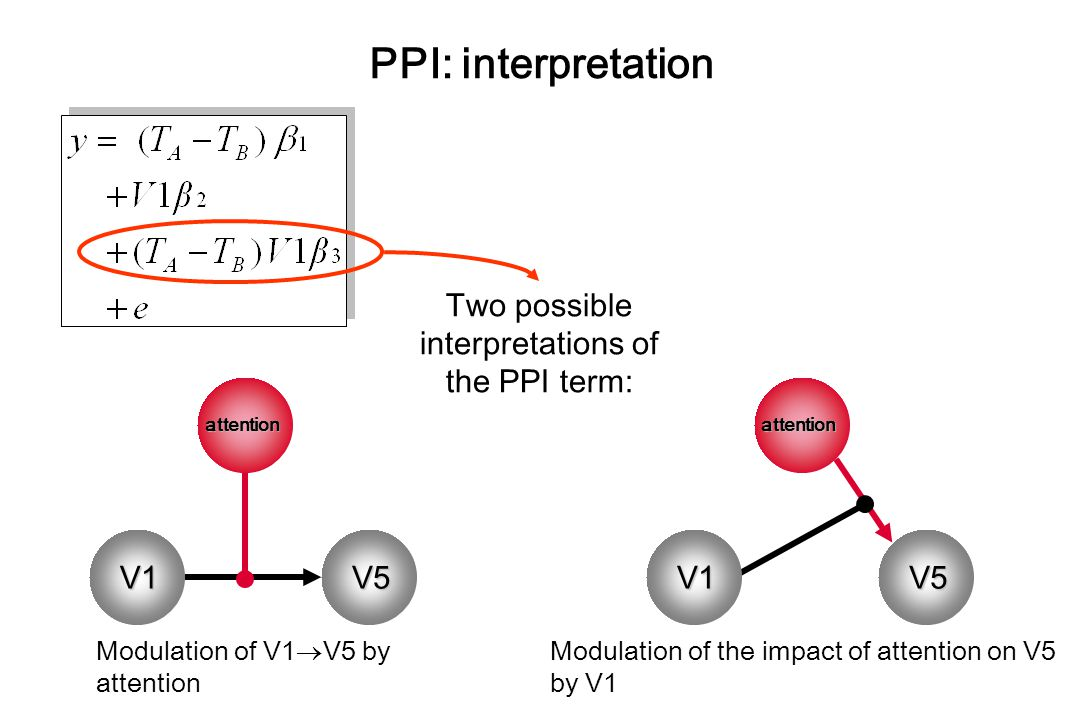 PPI: interpretation Two possible interpretations of the PPI term: V1 Modulation of V1  V5 by attention Modulation of the impact of attention on V5 by V1 V1V5 V1 V5 attention V1 attention
