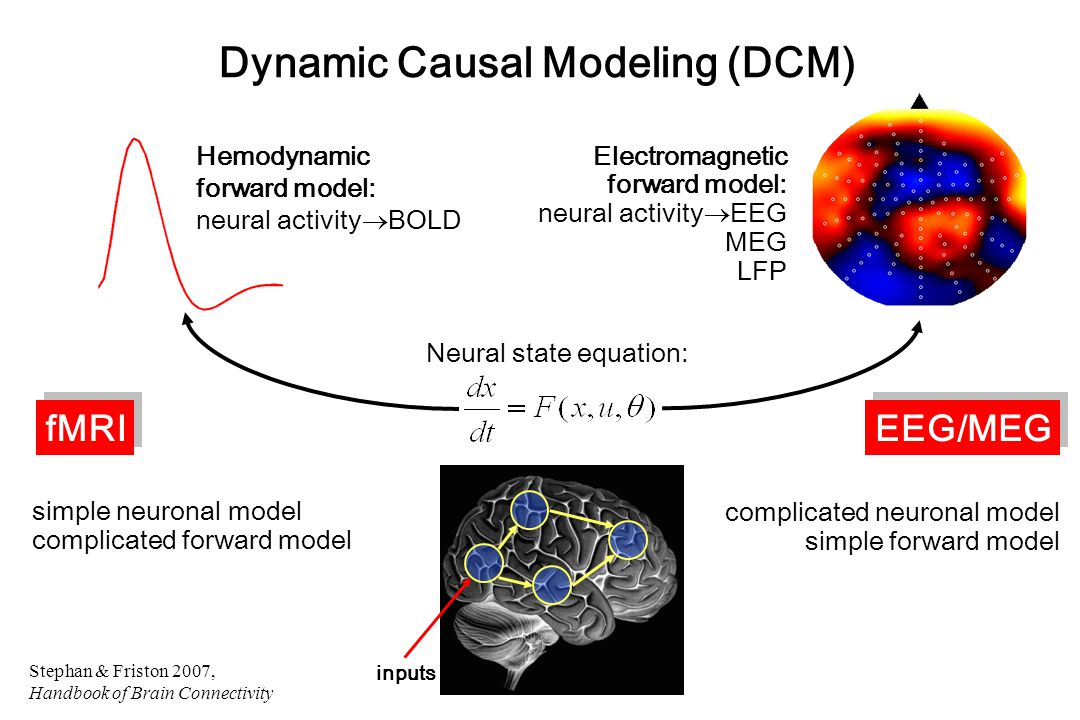Neural state equation: Electromagnetic forward model: neural activity  EEG MEG LFP Dynamic Causal Modeling (DCM) simple neuronal model complicated forward model complicated neuronal model simple forward model fMRI EEG/MEG inputs Hemodynamic forward model: neural activity  BOLD Stephan & Friston 2007, Handbook of Brain Connectivity