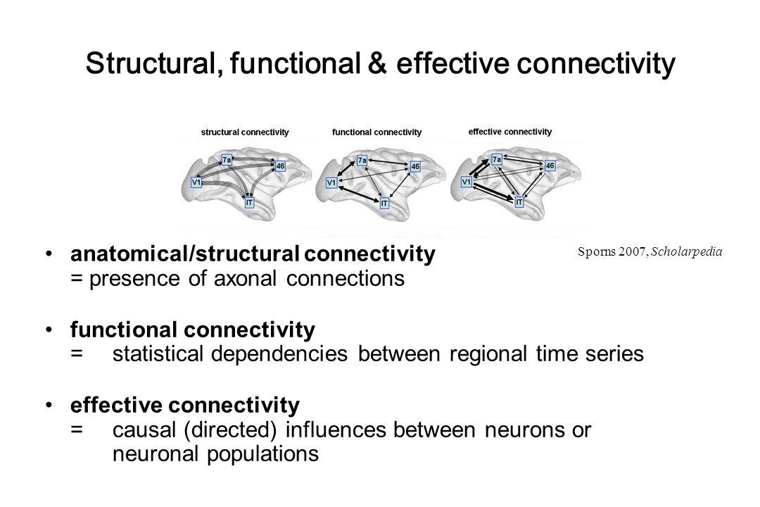 intrinsic connectivity direct inputs modulation of connectivity Neural state equation hemodynamic model λ x y integration BOLD yy y activity x 1 (t) activity x 2 (t) activity x 3 (t) neuronal states t driving input u 1 (t) modulatory input u 2 (t) t Stephan & Friston (2007), Handbook of Brain Connectivity   