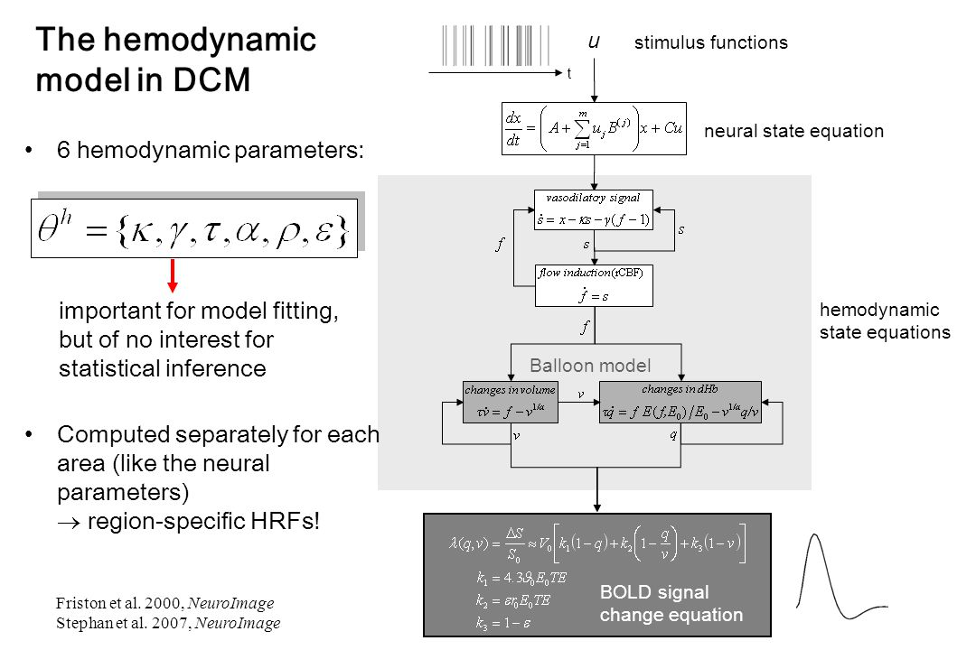 stimulus functions u t neural state equation hemodynamic state equations Balloon model BOLD signal change equation important for model fitting, but of no interest for statistical inference 6 hemodynamic parameters: Computed separately for each area (like the neural parameters)  region-specific HRFs.
