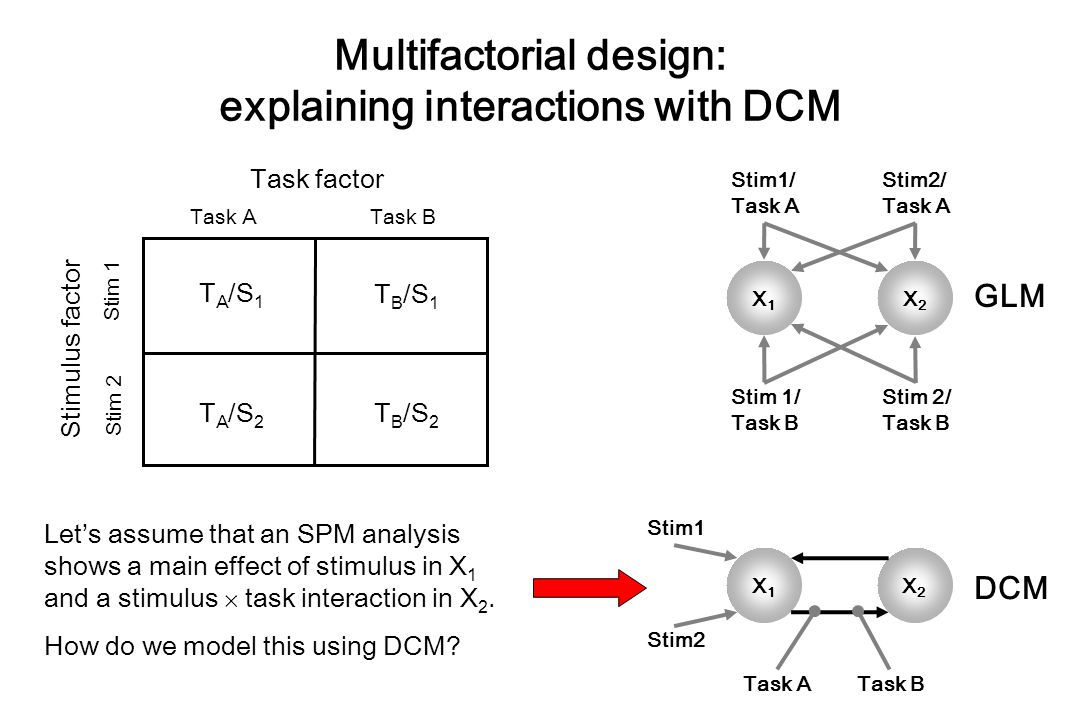 Multifactorial design: explaining interactions with DCM Task factor Task A Task B Stim 1 Stim 2 Stimulus factor T A /S 1 T B /S 1 T A /S 2 T B /S 2 X1X1 X2X2 Stim2/ Task A Stim1/ Task A Stim 1/ Task B Stim 2/ Task B GLM X1X1 X2X2 Stim2 Stim1 Task ATask B DCM Let's assume that an SPM analysis shows a main effect of stimulus in X 1 and a stimulus  task interaction in X 2.