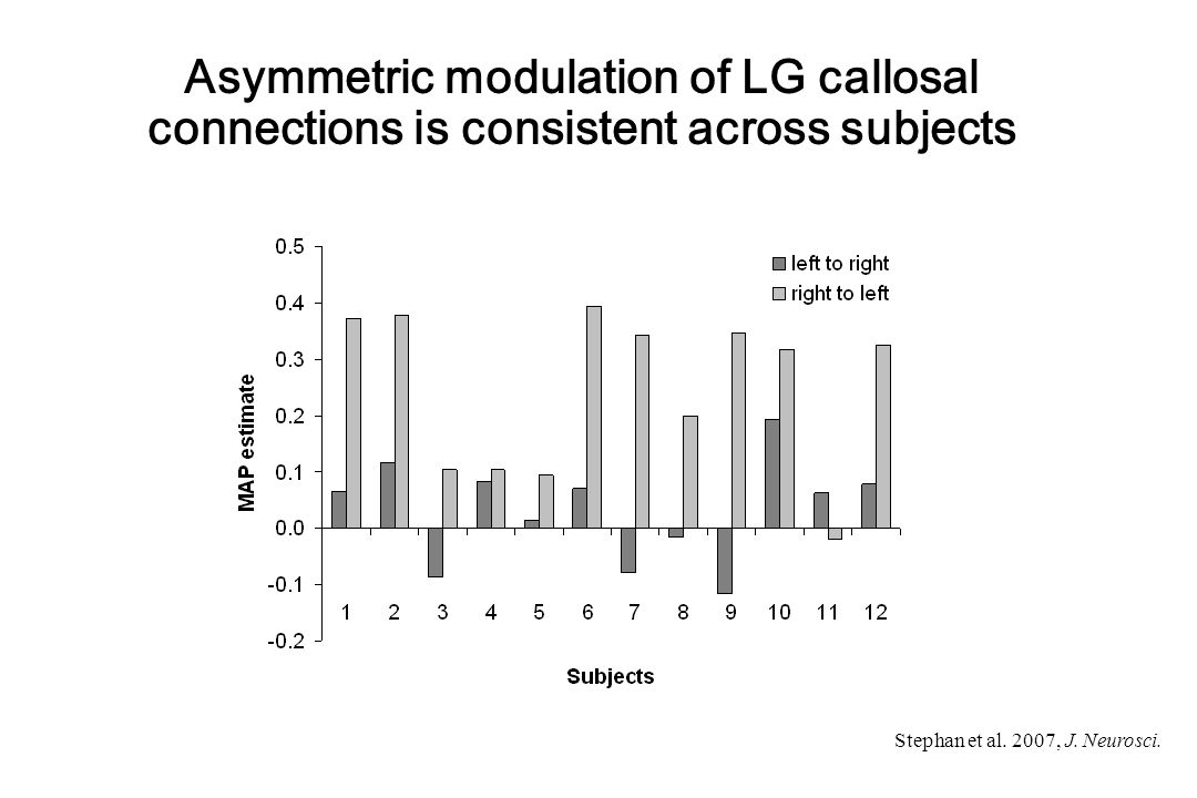 Asymmetric modulation of LG callosal connections is consistent across subjects Stephan et al.