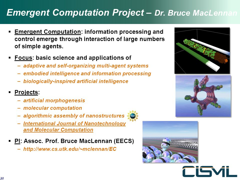Emergent Computation Project – Dr. Bruce MacLennan  Emergent Computation: information processing and control emerge through interaction of large numb
