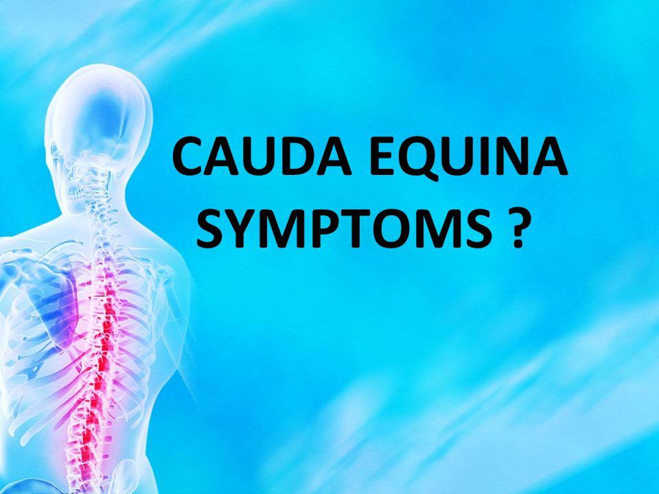 CAUDA EQUINA SYMPTOMS ?