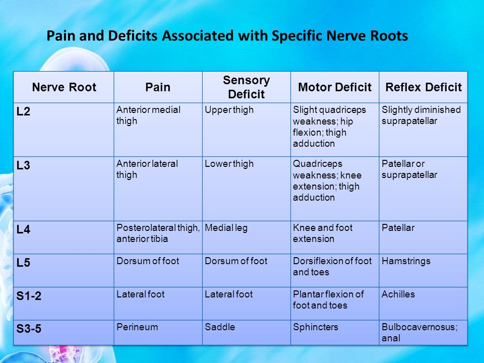 Pain and Deficits Associated with Specific Nerve Roots