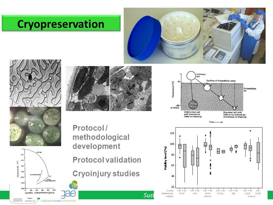 Sustainable Pathways for Algal Bioenergy Cryopreservation Protocol / methodological development Protocol validation Cryoinjury studies