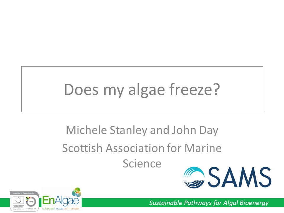 Does my algae freeze Michele Stanley and John Day Scottish Association for Marine Science