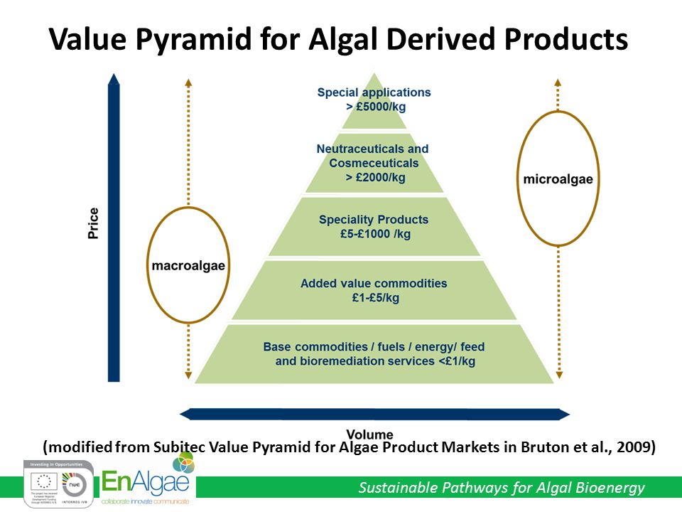 Sustainable Pathways for Algal Bioenergy (modified from Subitec Value Pyramid for Algae Product Markets in Bruton et al., 2009) Value Pyramid for Algal Derived Products
