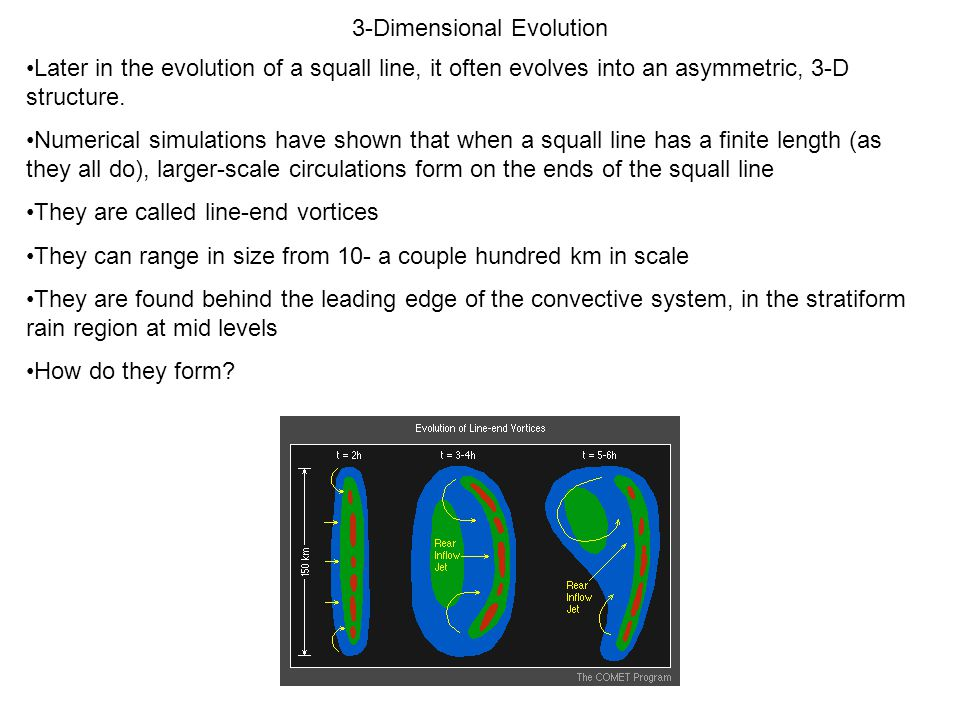3-Dimensional Evolution Later in the evolution of a squall line, it often evolves into an asymmetric, 3-D structure. Numerical simulations have shown