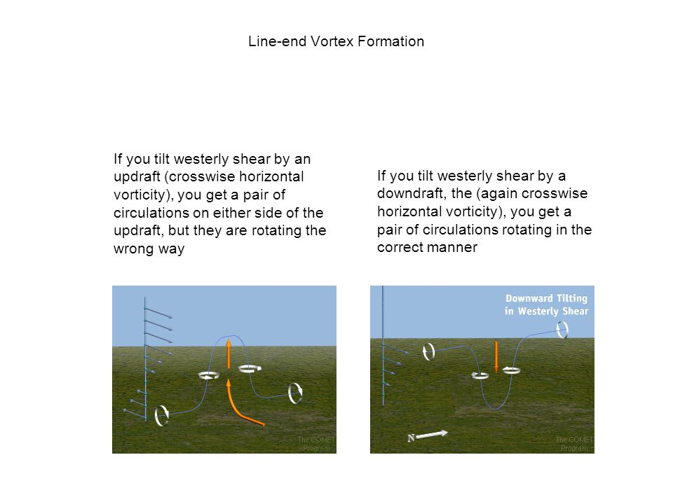 Line-end Vortex Formation If you tilt westerly shear by an updraft (crosswise horizontal vorticity), you get a pair of circulations on either side of
