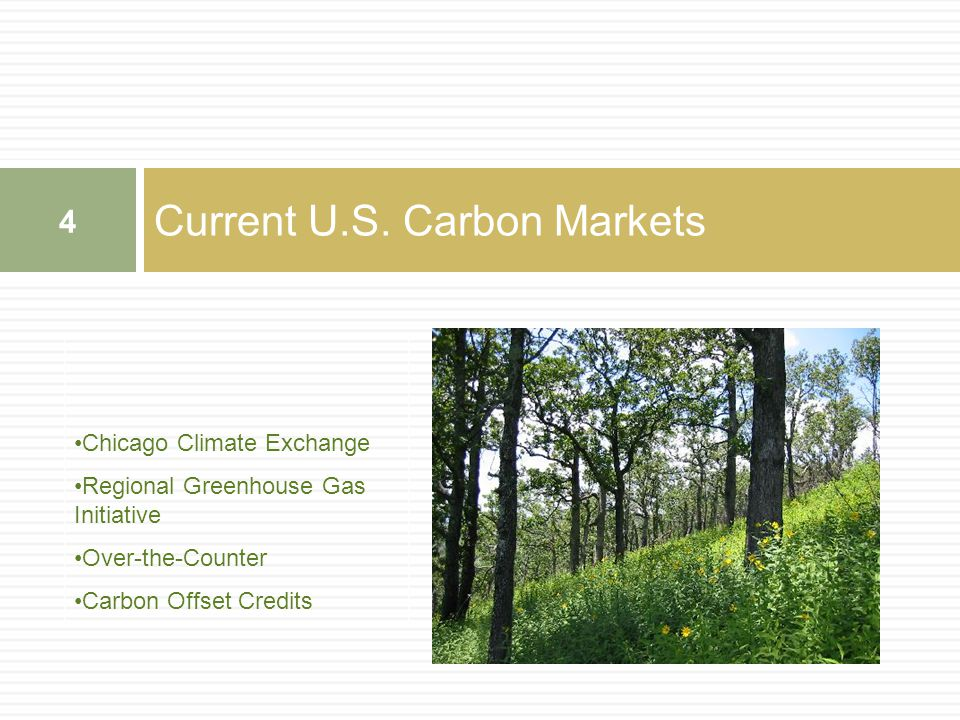 Current U.S. Carbon Markets 4 Chicago Climate Exchange Regional Greenhouse Gas Initiative Over-the-Counter Carbon Offset Credits