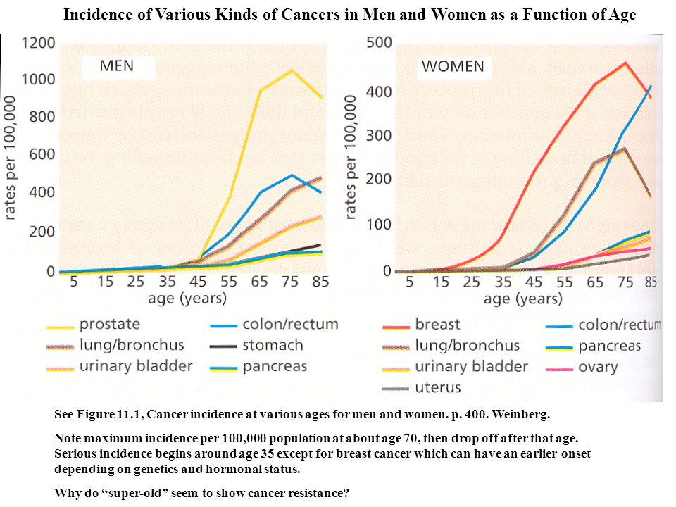See Figure 11.1, Cancer incidence at various ages for men and women. p. 400. Weinberg. Note maximum incidence per 100,000 population at about age 70,