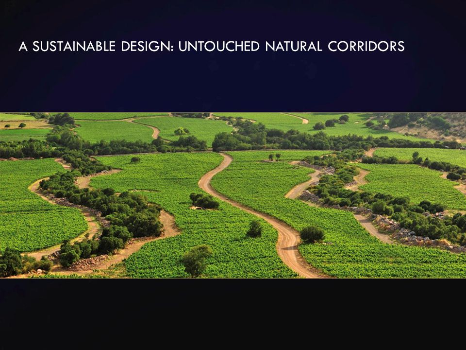 A SUSTAINABLE DESIGN: UNTOUCHED NATURAL CORRIDORS