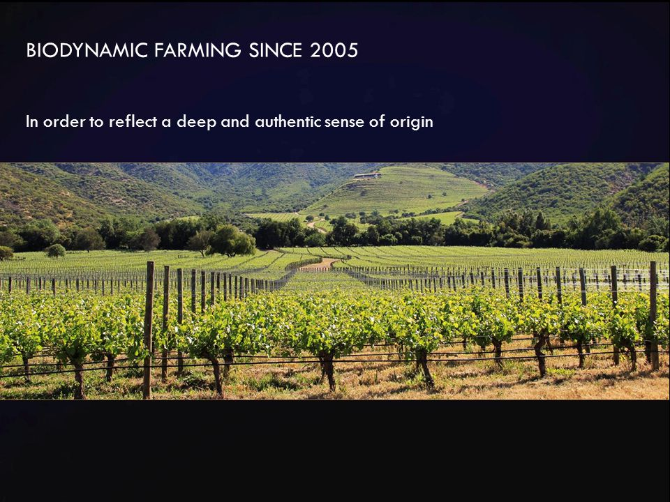 BIODYNAMIC FARMING SINCE 2005 In order to reflect a deep and authentic sense of origin
