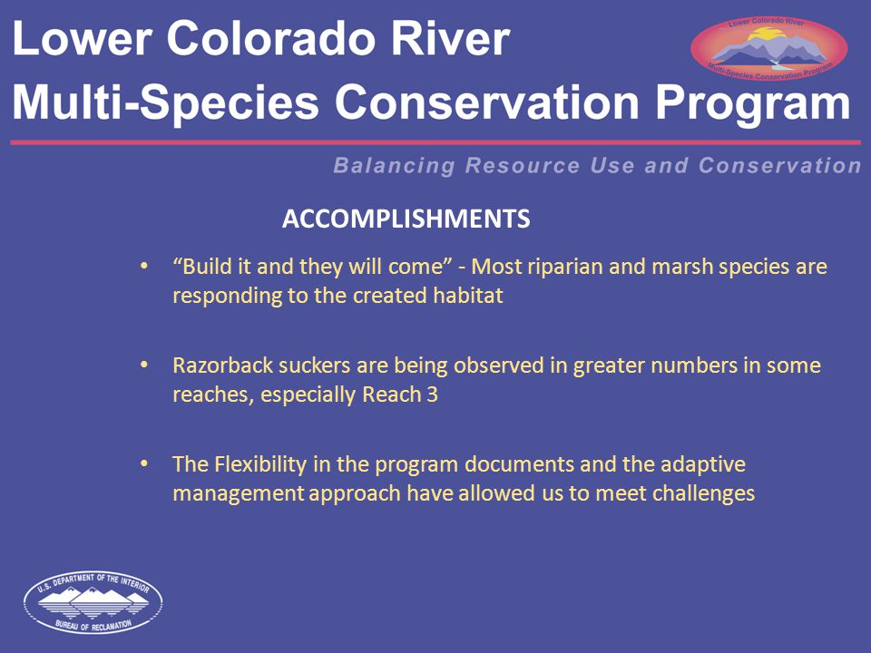 ACCOMPLISHMENTS Build it and they will come - Most riparian and marsh species are responding to the created habitat Razorback suckers are being observed in greater numbers in some reaches, especially Reach 3 The Flexibility in the program documents and the adaptive management approach have allowed us to meet challenges