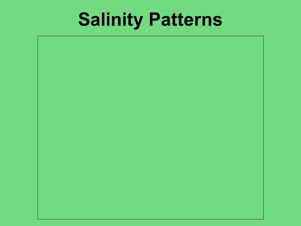 Salinity Patterns